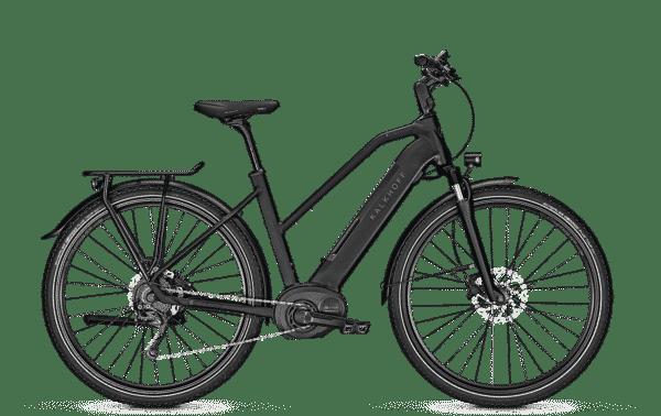 Rad Power Bikes - Rad Power Bikes RadCity